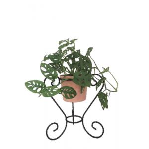Porte plante tripode ancien...